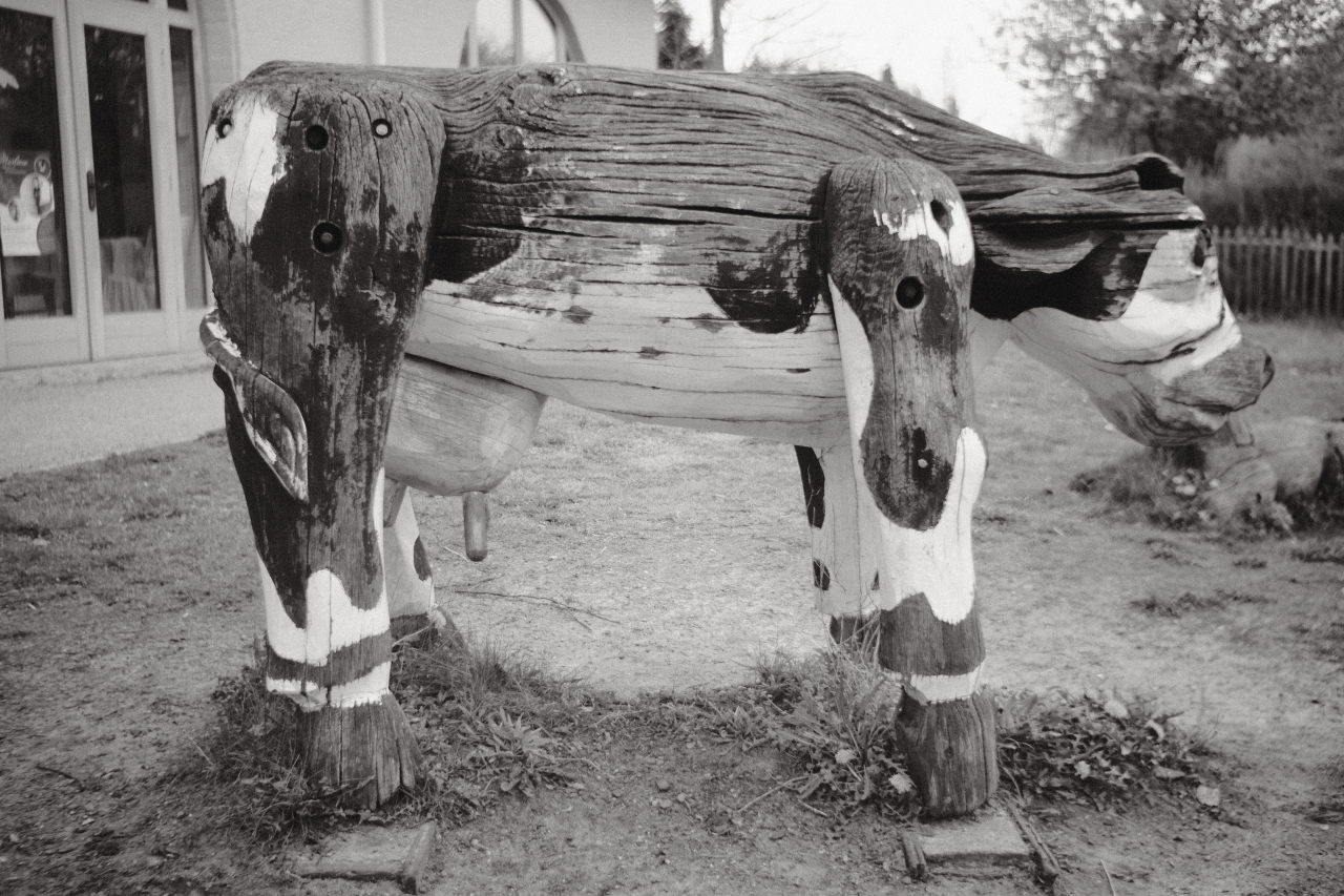 a wooden cow