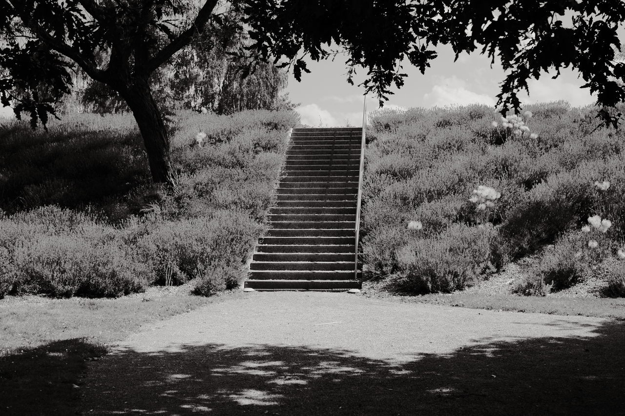 outside staircase by paul hoppe